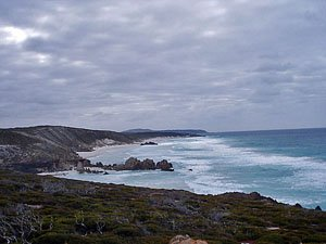 Looking along Whalebone Beach FTZ13